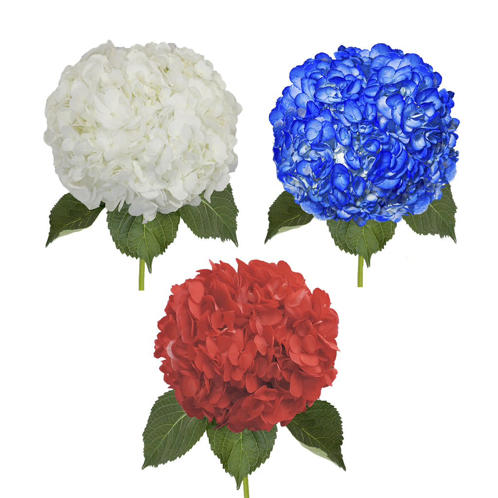 Painted Hydrangea Patriotic Box