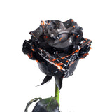 Darkness Confetti Painted Roses