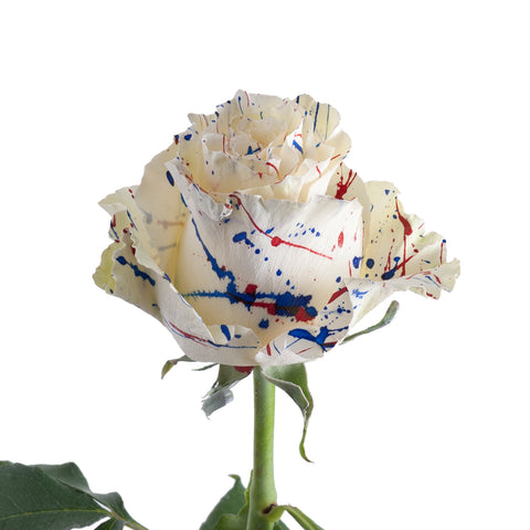 Patriot Confetti Painted Roses