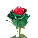 Marshmallow Green & Red Metallic Painted Roses