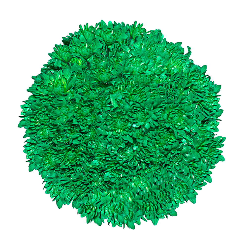 Green Tinted Pompom Cushion