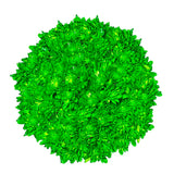 Lime Green Tinted Pompom Cushion