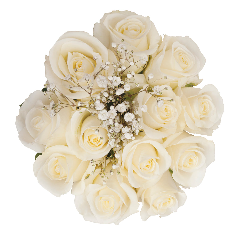 Dozen Rose Bouquet White - pack 18
