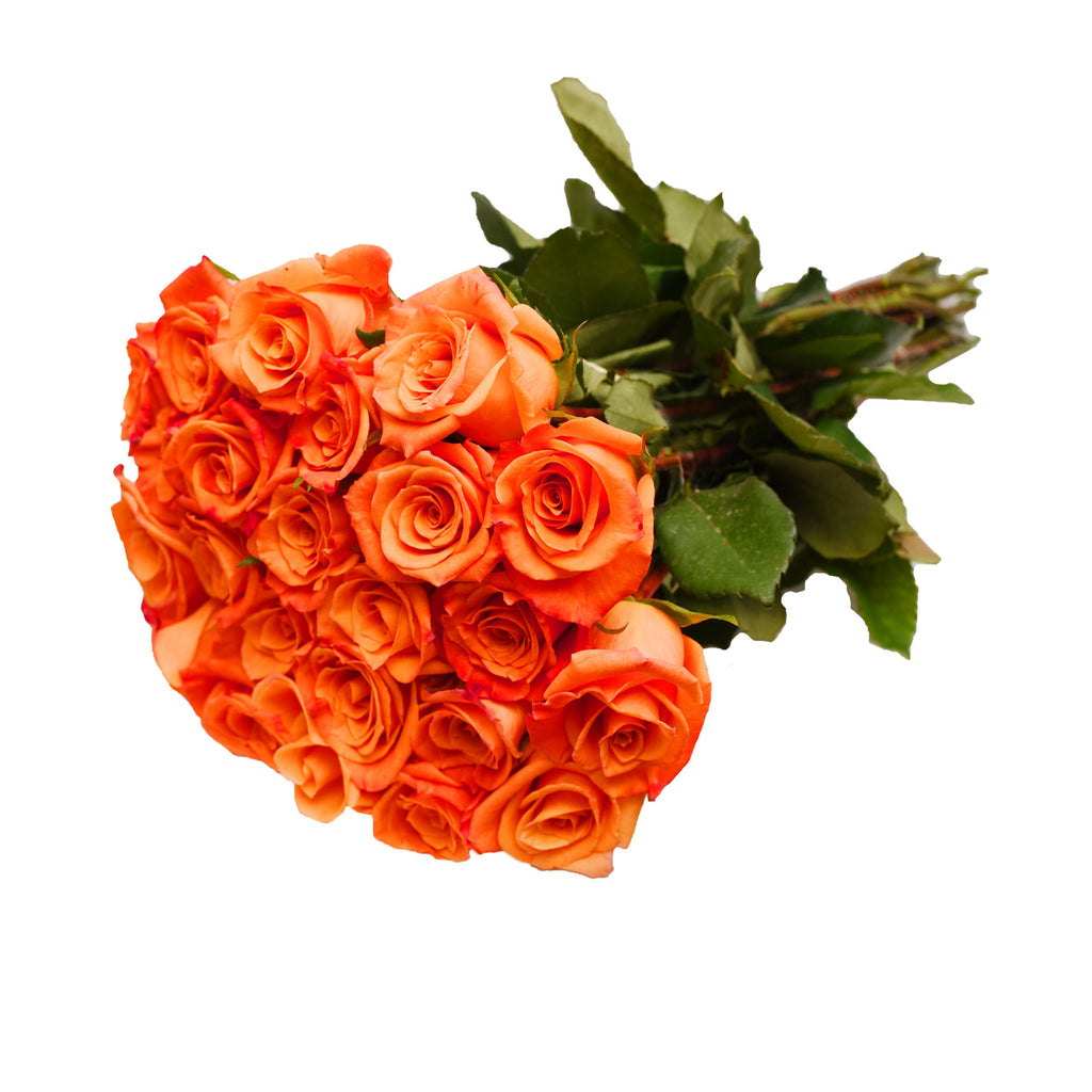 24 Farm Fresh Orange Roses Gift