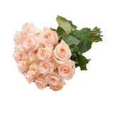 24 Farm Fresh Peach Roses Gift
