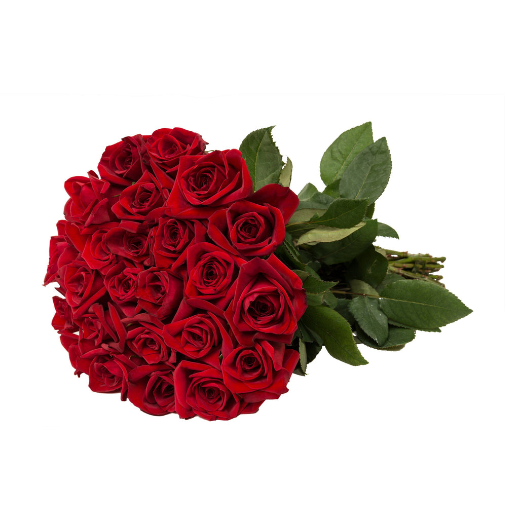 24 Farm Fresh Red Roses Gift