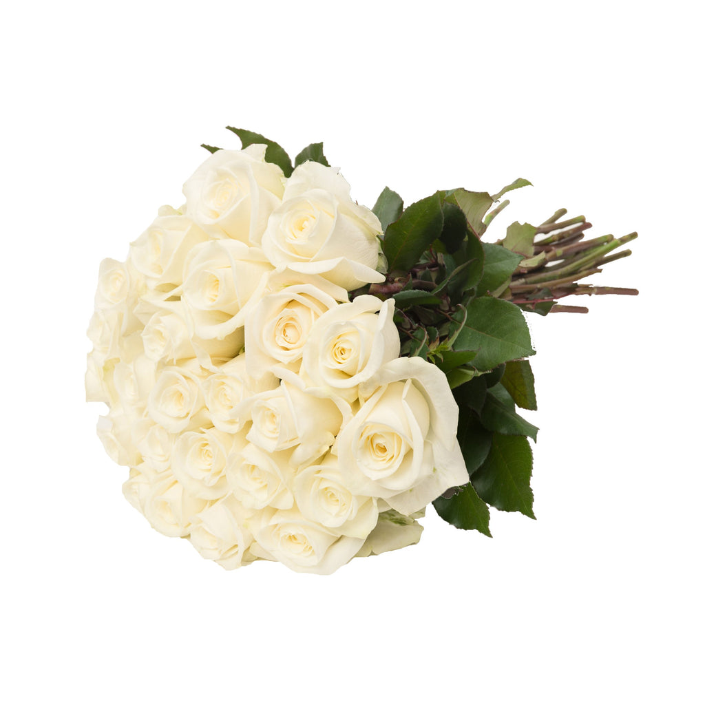 24 Farm Fresh White Roses Gift