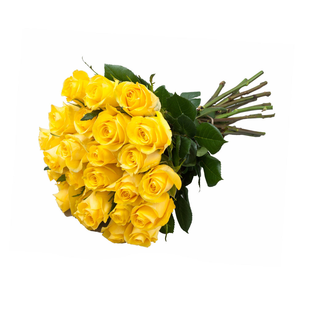 24 Farm Fresh Yellow Roses Gift