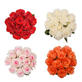 Farm Fresh Dozen Roses Basic Needs with Red and White