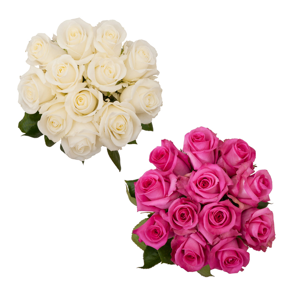Dozen Roses Hot Pink & White Wedding Pack