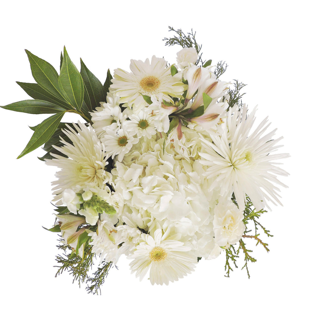 Touch of White Mix Bouquet - 8 Pack