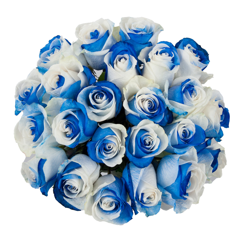 Blue & White Tinted Roses