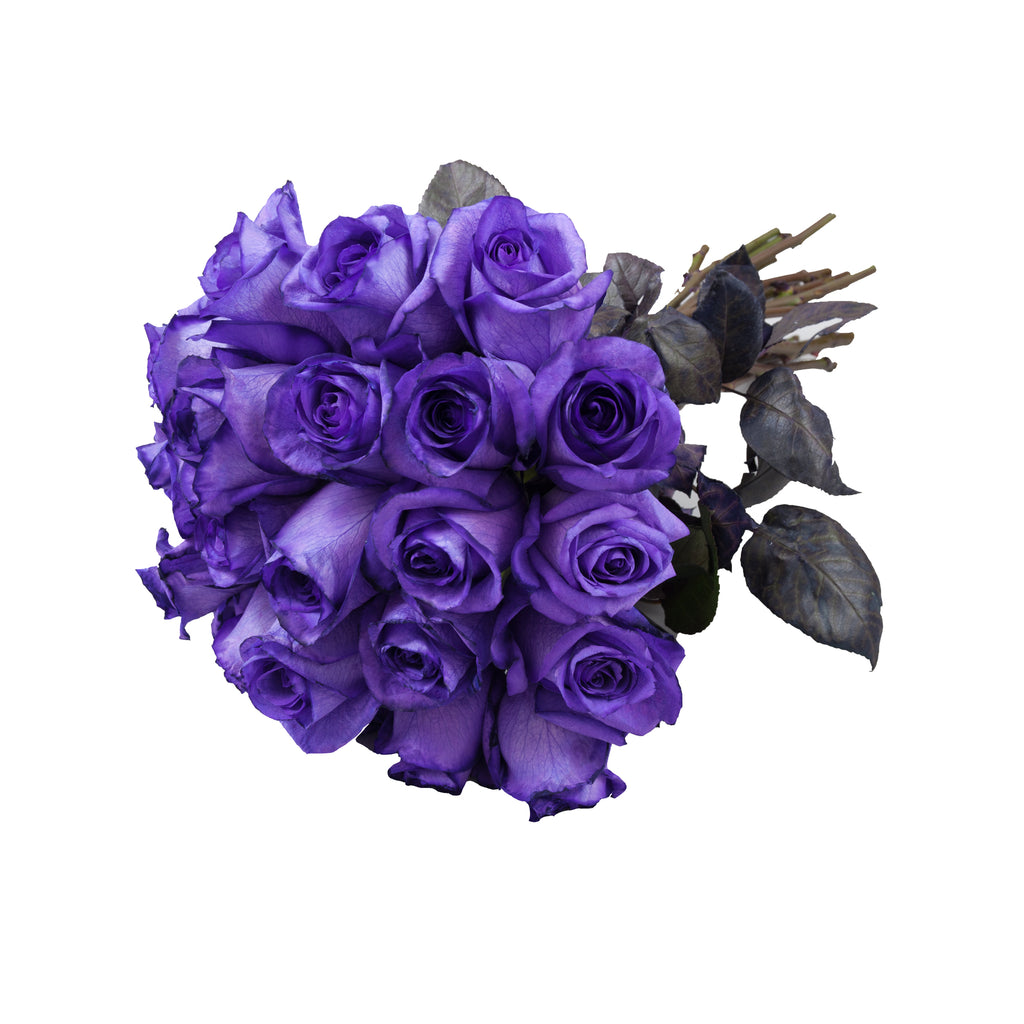 Purple Tinted Roses