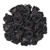 Black Tinted Roses