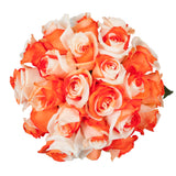 Orange & White Tinted Roses