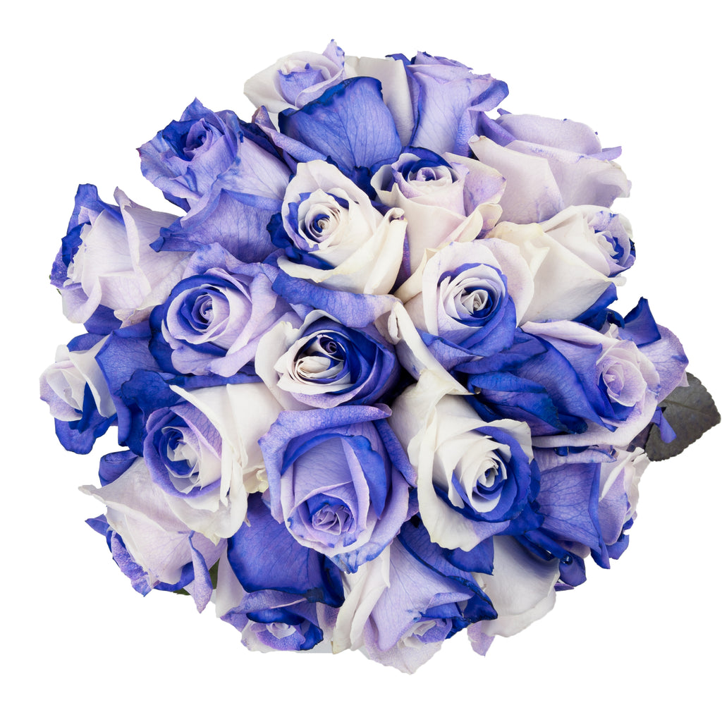Purple & White Tinted Roses