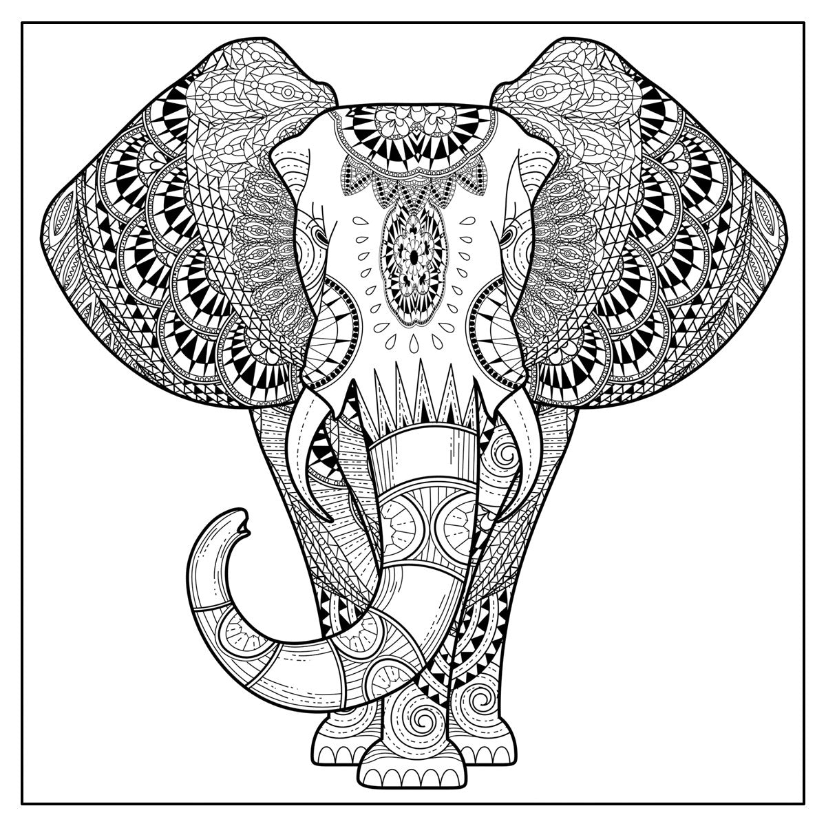 Animal World Adult Coloring Book With Fold Our Poster and Music CD ...