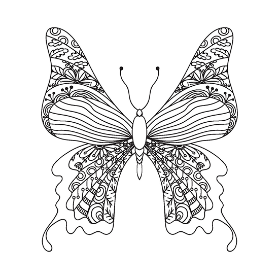 Butterflies Adult Coloring Book With Color Pencils - Color With Music