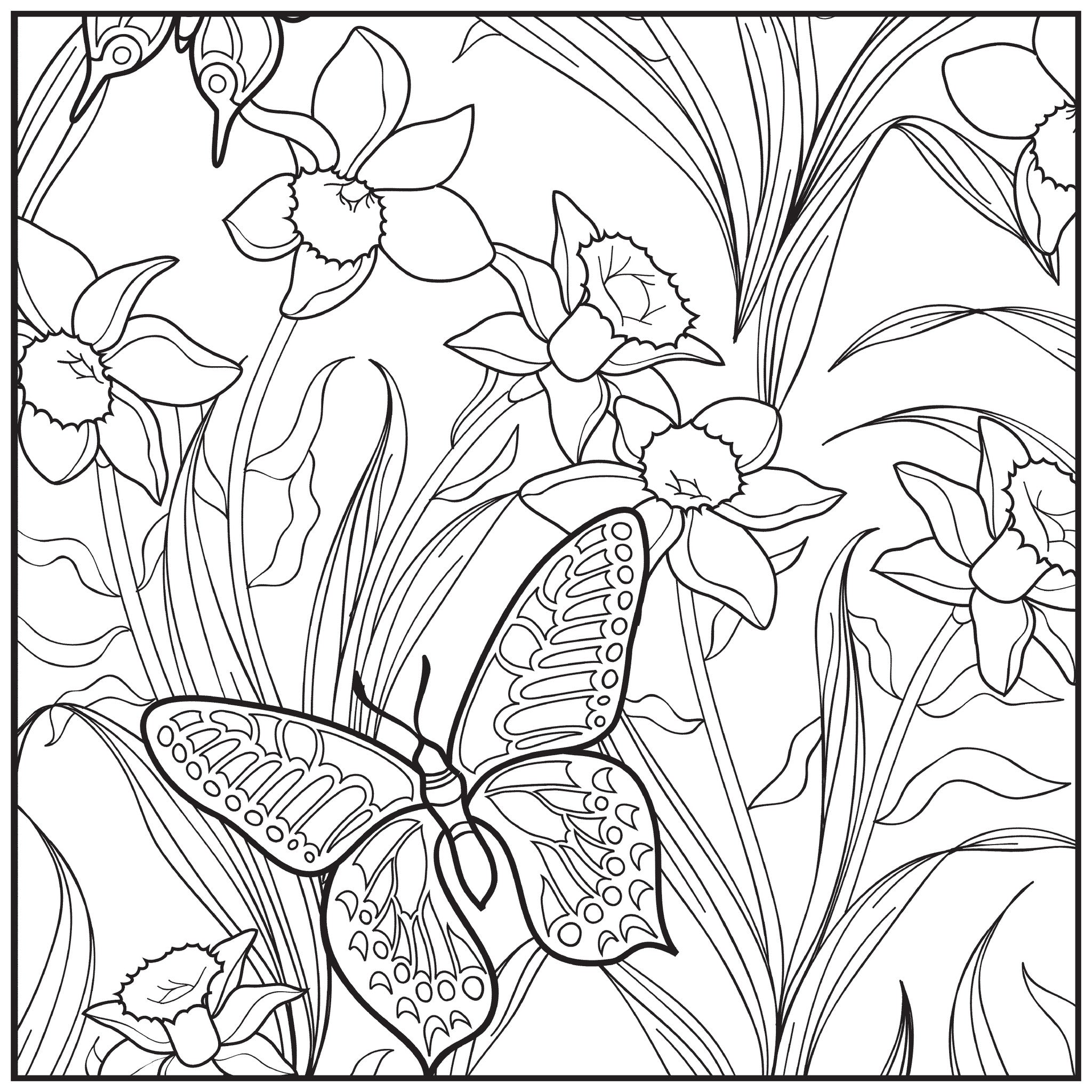 Color With Music Botanical Garden Adult Coloring Book Blank Page