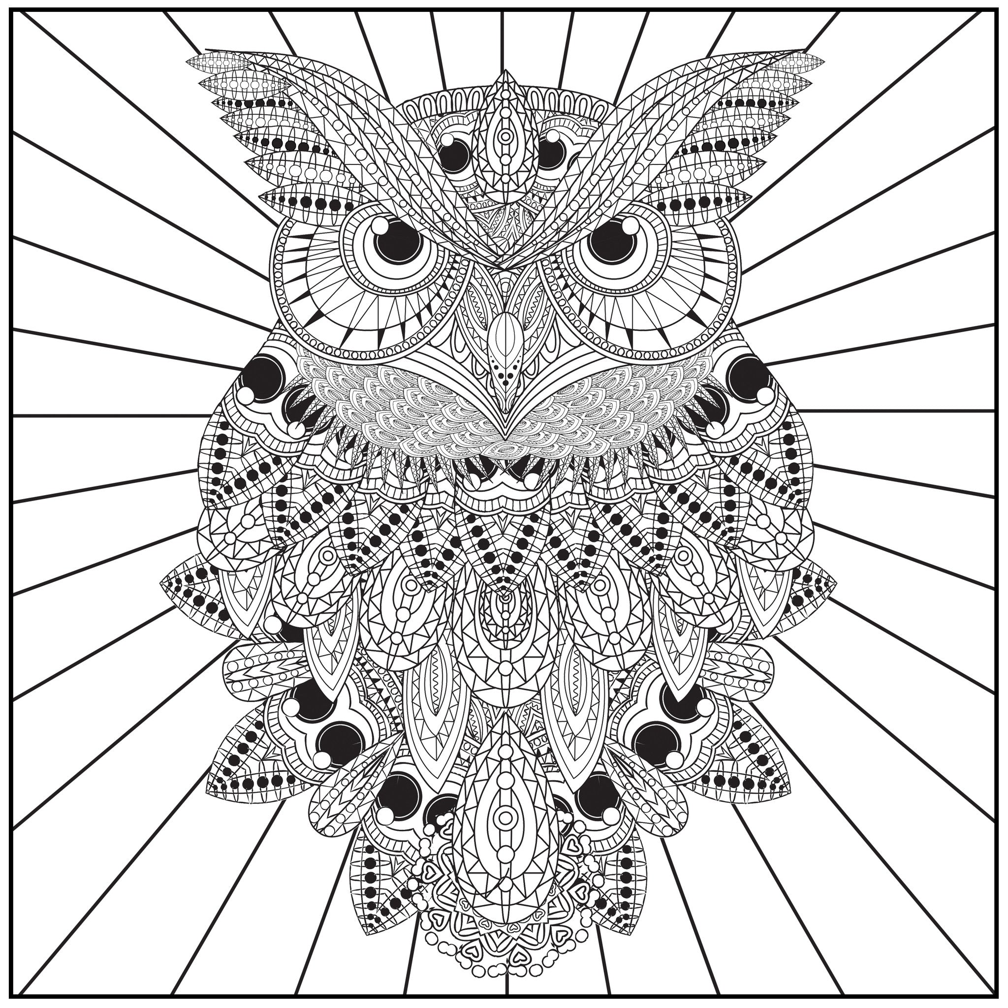 Coloring book color of art -  Color With Music Owls Of The Night Adult Coloring Book Blank Page
