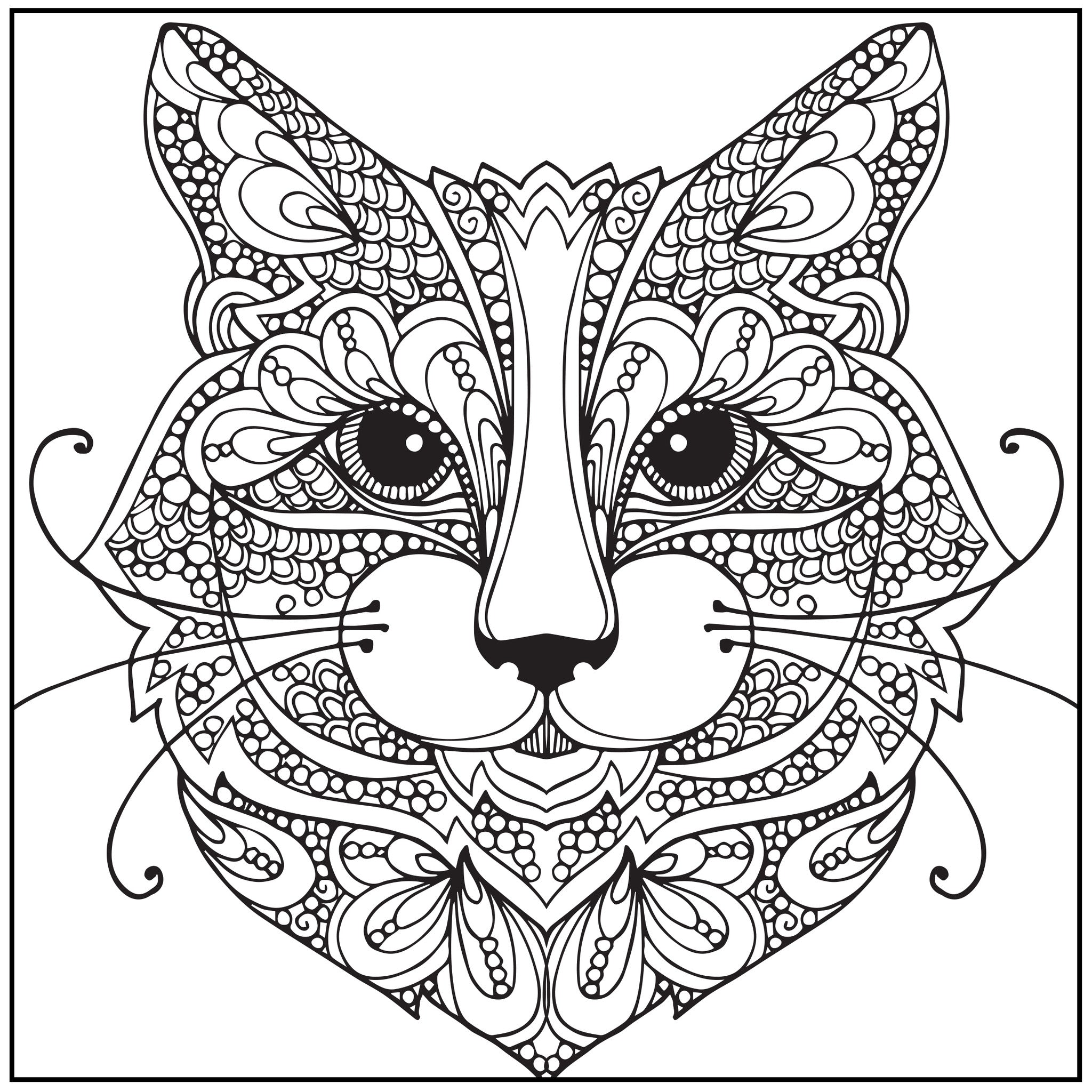 Color With Music Wild About Cats Adult Coloring Book Blank Page