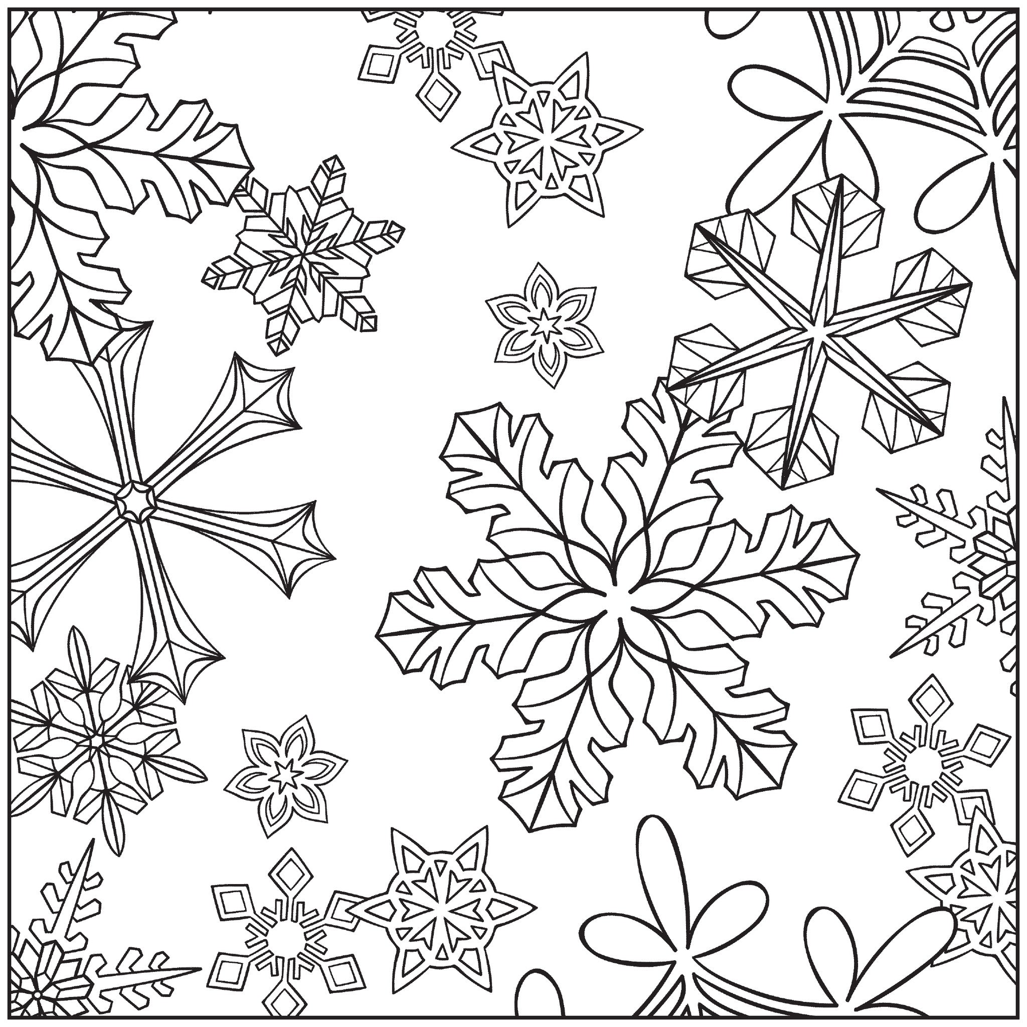 Winter Wonderland Adult Coloring Book With Relaxation CD