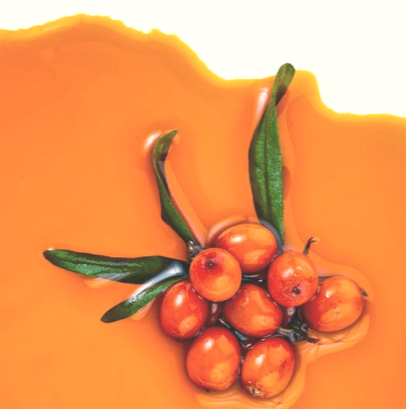 Organic Beauty: Benefits of Sea Buckthorn Oil