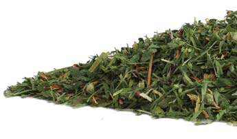 alfalfa-leaf-pregnancy-tea-herbal