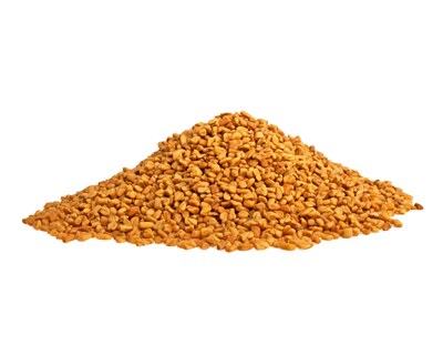fenugreek for increasing milk production