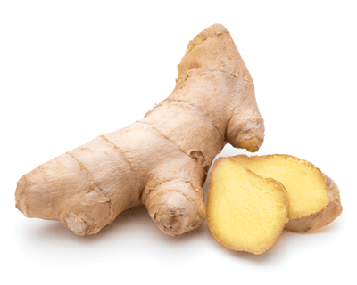 ginger helps nausea