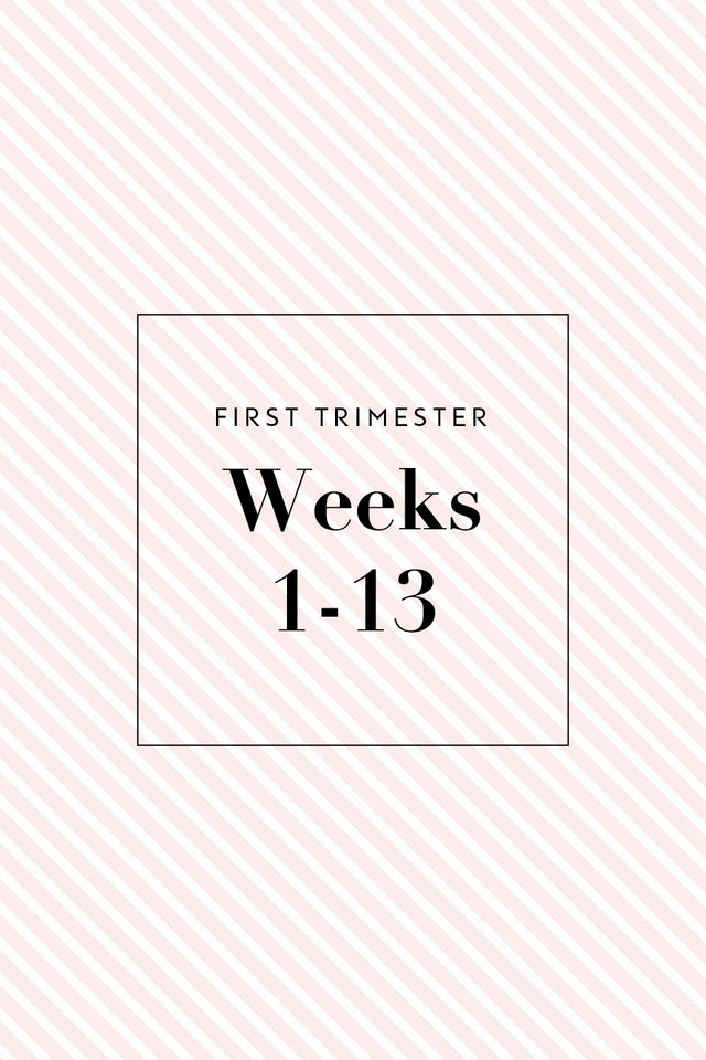 Pregnancy Shopping Checklist By Trimester The Spoiled Mama The Spoiled Mama