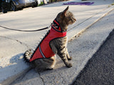 SpikeVest for Cats