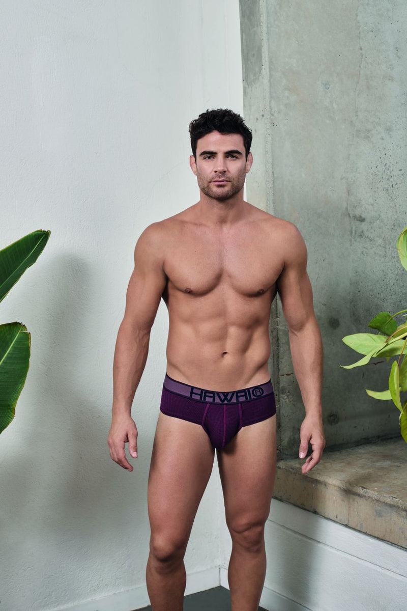 HAWAI 41974 Briefs Color Red wine