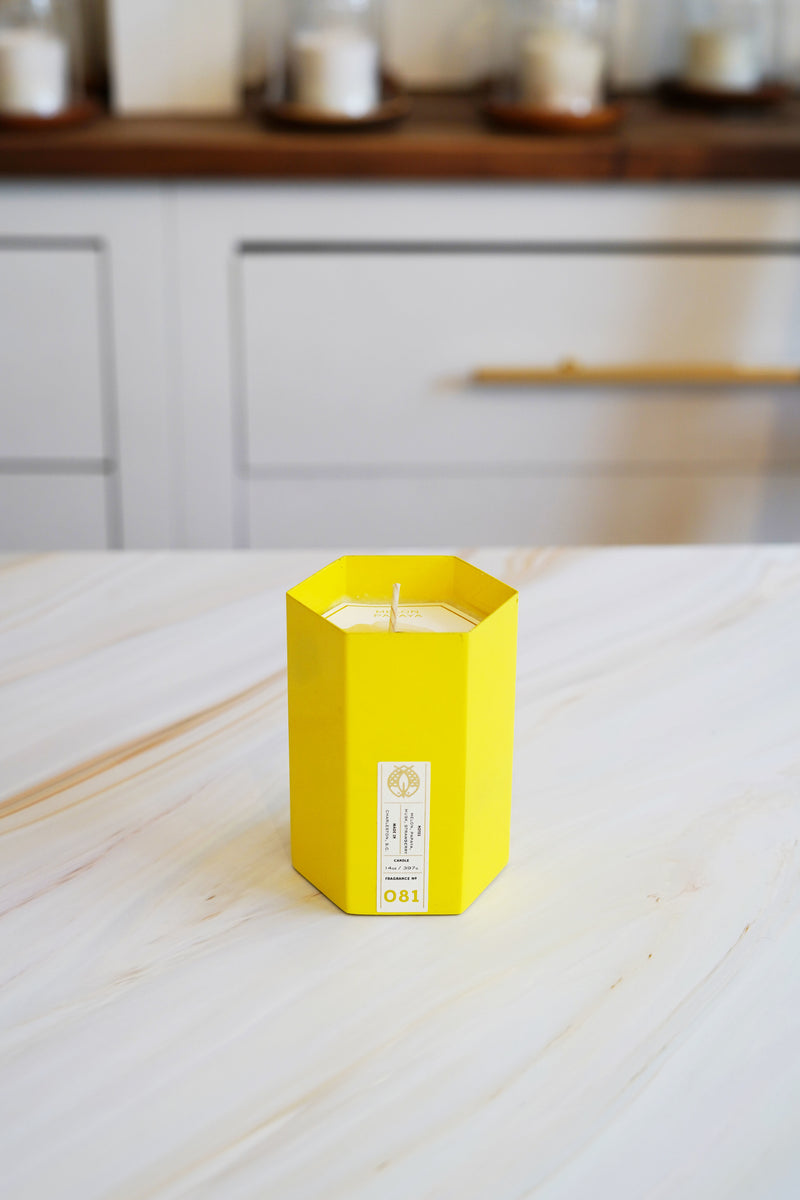 Candlefish No. 81 Hexagon Candle