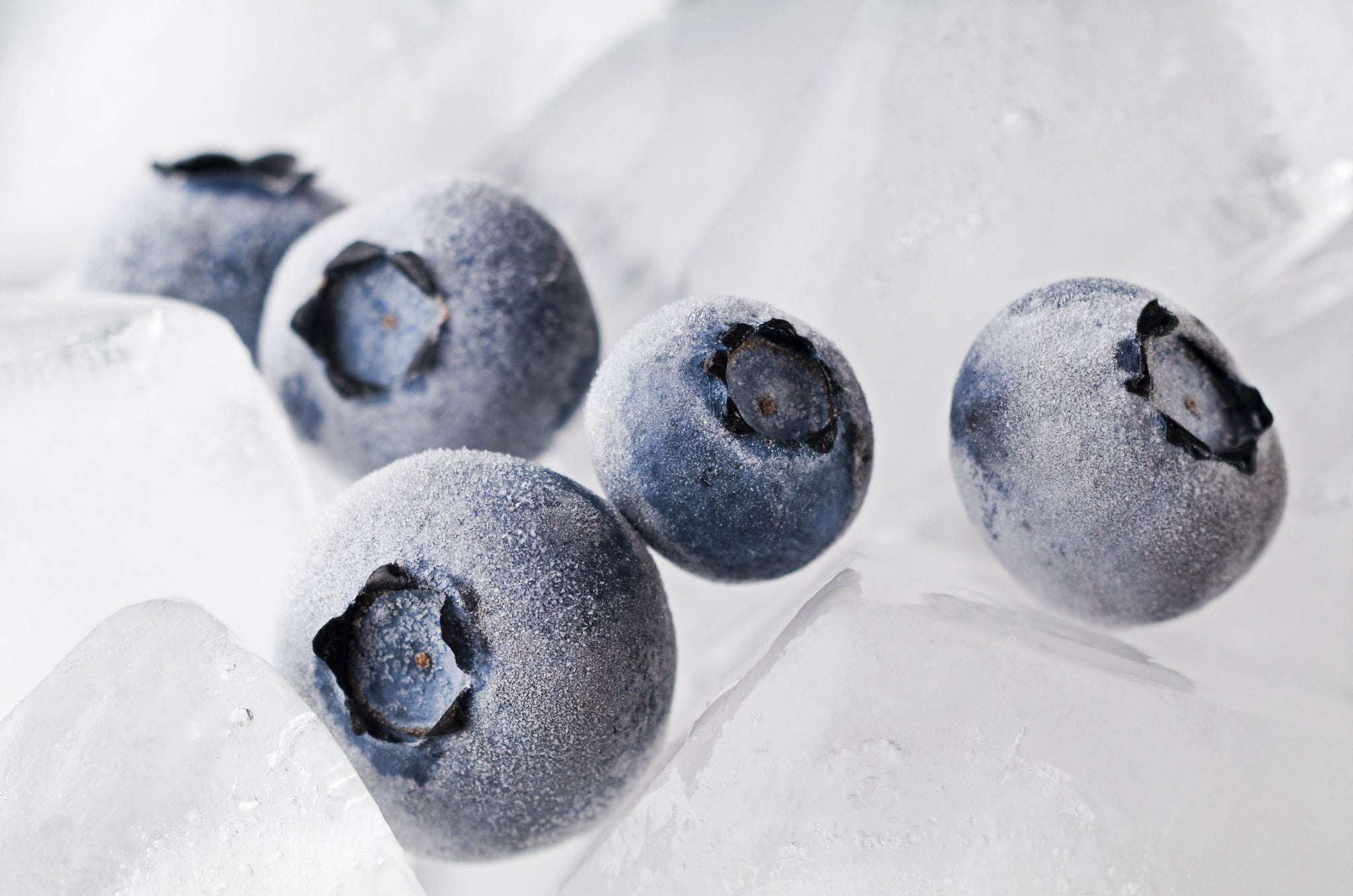 Frozen Yogurt Berries For Health