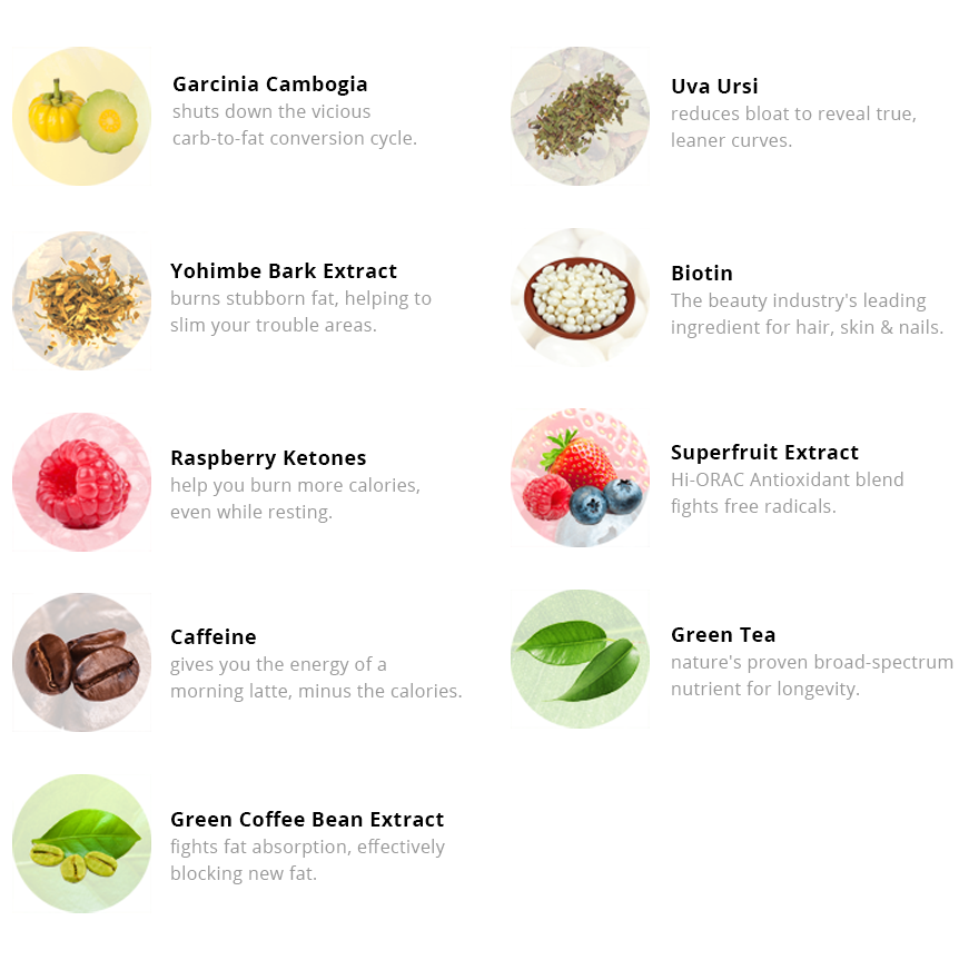 ALL-NATURAL INGREDIENT PROFILE