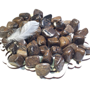 ::STROMATOLITE:: Gemstone - HK HIGH KICKS