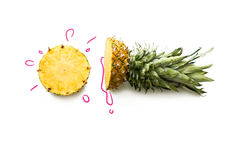 Ananas Sativus (Pineapple) Fruit Extract