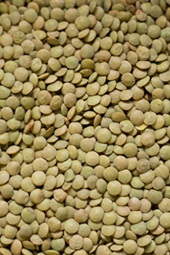 Organic Green Lentils by Jojo's Organics | Raw Dried Organic Non-GMO Bulk Legumes 5 lbs Great for Lentil Soup High in Fiber 100% Product of USA