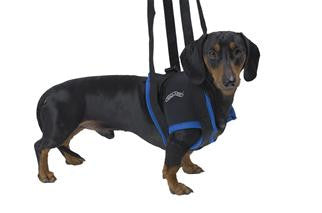 Walkabout Front Leg Support Harness - Doolittle's Pet Products - 6