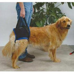 Rear Dog Sling Harness by Walkabout - Doolittle's Pet Products - 2