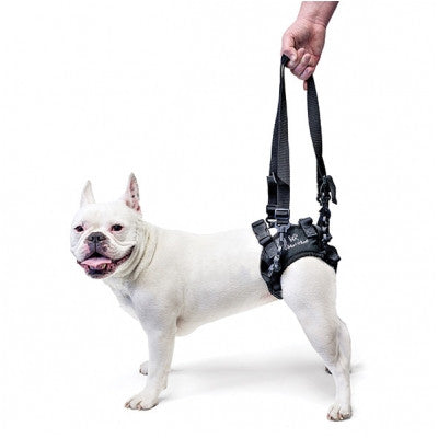 Rear Dog Sling Harness- Walkin' Lift - Doolittle's Pet Products - 1