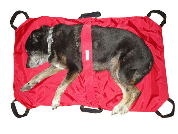 Dog Stretcher - Doolittle's Pet Products - 1