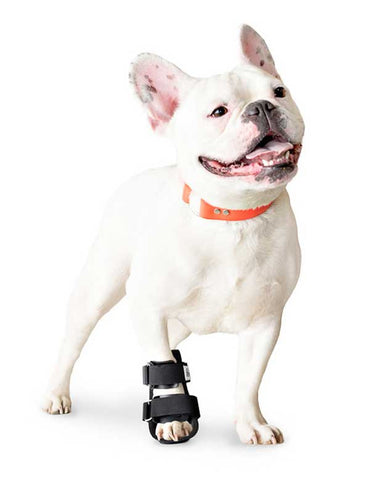 The Walkin' Bootie Splint - Doolittle's Pet Products - 1