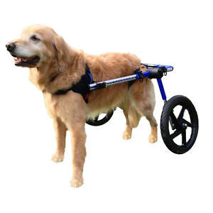 Dog Wheelchair by Walkin' Wheels - Doolittle's Pet Products - 3