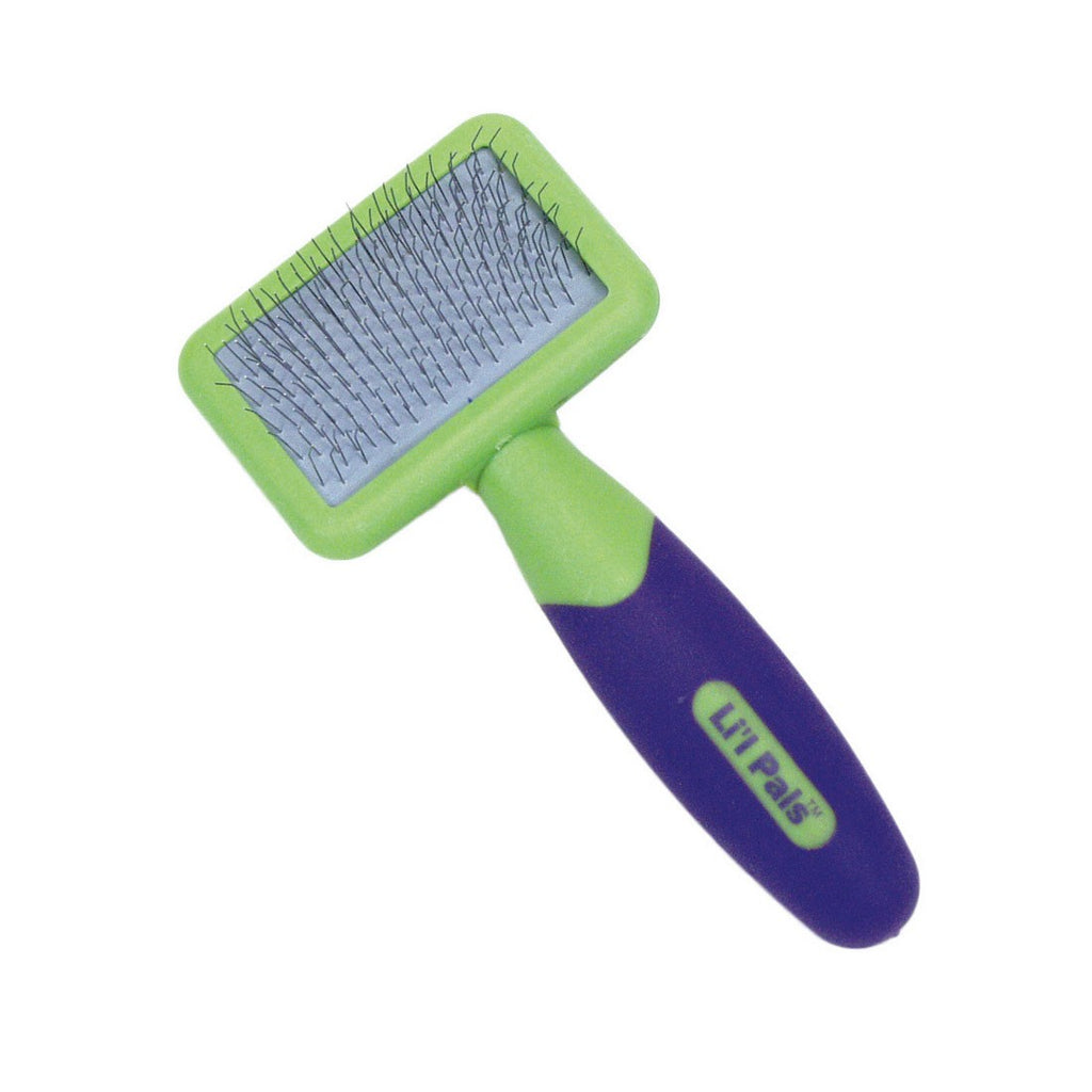 Coastal Pet Products Lil'l Pals Kitten Slicker Brush with Coated Tips Green / Purple 5