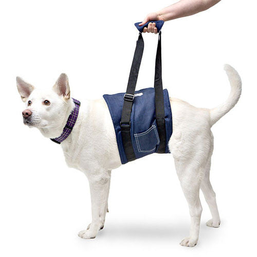 Dog Sling Harness For Abdomen Walkin Support Vet Selected At Doolittle S Pet Products