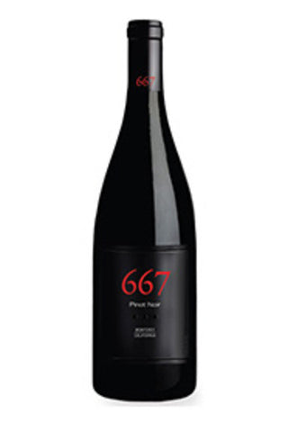 Noble Vines 667 Pinot Noir - SoCal Wine & Spirits