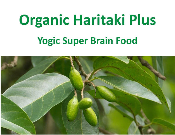 Organic Haritaki Plus | Capsules | 100 Caps: Yogic Super Brain Food | FREE SHIPPING