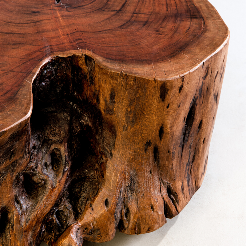 RIVENDELL - Acacia Live Edge Coffee Table (Natural) - Wazo Furniture